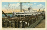 New Orleans - Cotton Steamboats